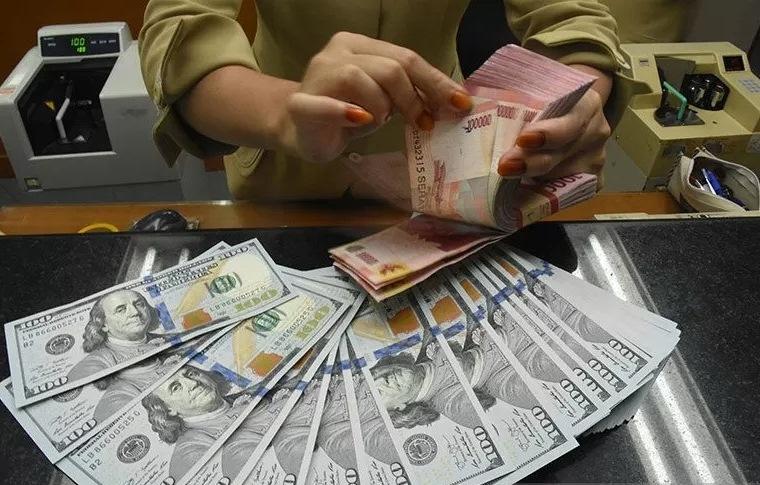 Petugas kasir menghitung mata uang rupiah di gerai penukaran mata uang asing (Ant)